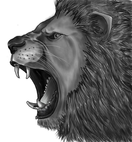 How to Draw a Growling Lion