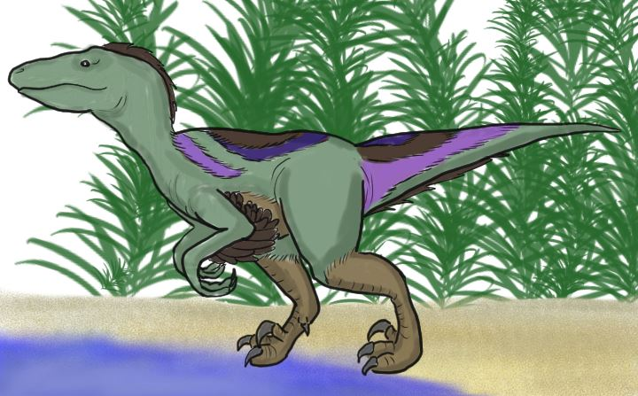 How to Draw a Cartoon Velociraptor
