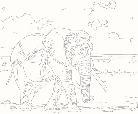 Learn to Draw Elephants