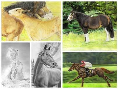 learn to draw-horses