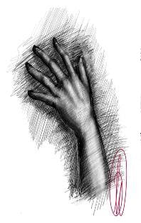 learn to draw hands