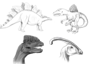 Drawing Dinosaurs - How to draw dinosaurs for absolute beginners