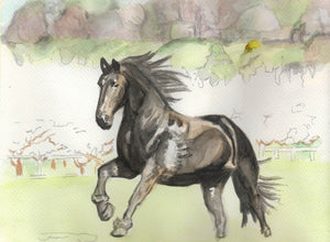 Learn to Paint Horses and Dogs In Watercolor For The Absolute Beginner