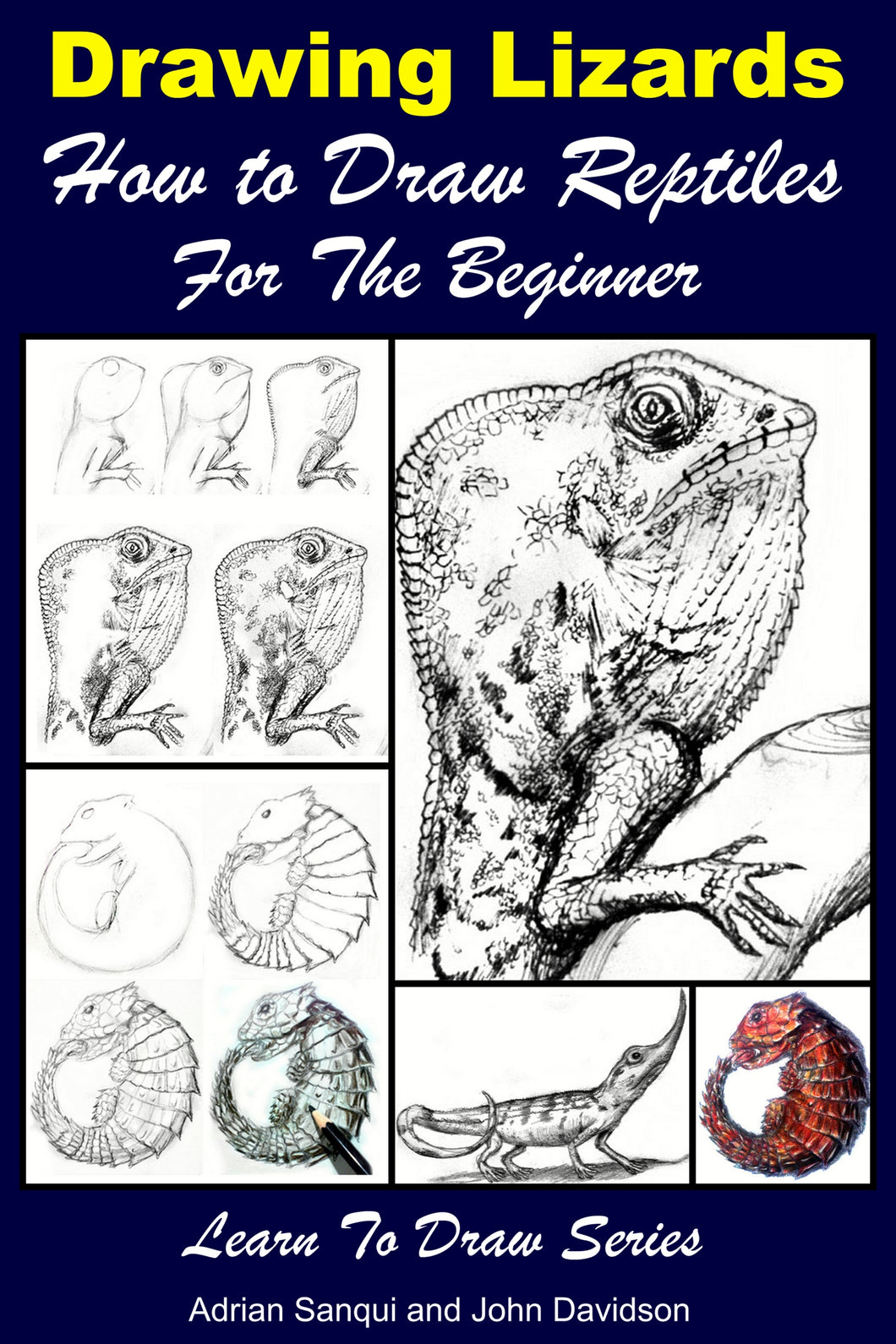 Drawing Lizards - How to Draw Reptiles For the Beginner