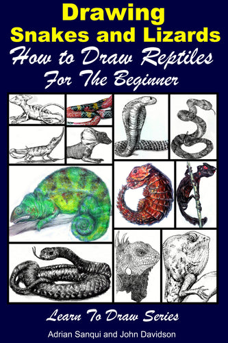 Drawing Snakes and Lizards - How to Draw Reptiles For the Beginner