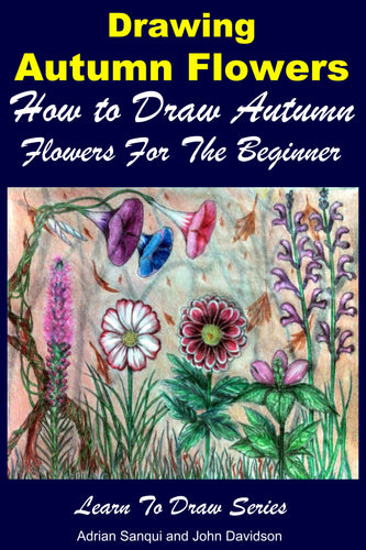 Drawing Autumn Flowers - How to Draw Autumn Flowers For the Beginner