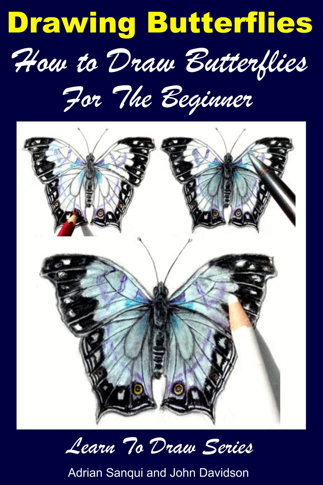 Drawing Butterflies - How to Draw Butterflies For the Beginner