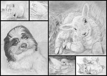 Load image into Gallery viewer, Learn How to Draw Portraits of Domestic Animals in Pencil For the Absolute Beginner
