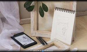 Learn How to Draw - 30 Hour Video Training Course + 30 Learn to Draw Books