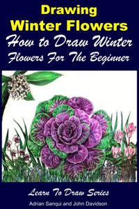 Drawing Winter Flowers - How to Draw Winter Flowers For the Beginner