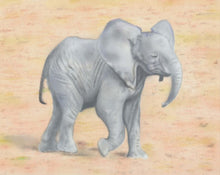 Load image into Gallery viewer, Learn How to Airbrush Animals For the Beginner