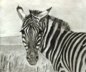 Drawing - Drawing with Charcoal For Beginners - Step By Step Guide to Drawing Landscapes – Portraits – Animals