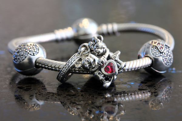 Sterling Silver Pandora Compatible Charms