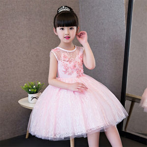 Children Girls Sweet Beautiful Pink Color Birthday Wedding Party Princess Lace Dress Baby Kids Elegant Host Holiday Prom Dress