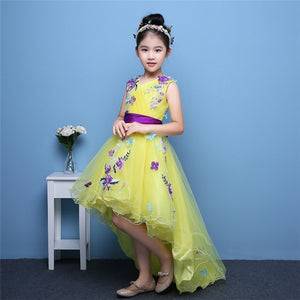 2018 Korean Sweet Children Girls Pink Color Birthday Wedding Party Flowers Princess Lace Dress Kids Babies Model Show Tail Dress