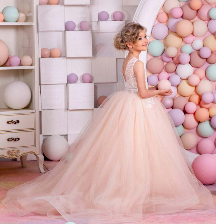 Stunning blush pink soft tulle flower girl dresses with long train Holiday Bridesmaid Wedding Party Birthday princess lace gowns