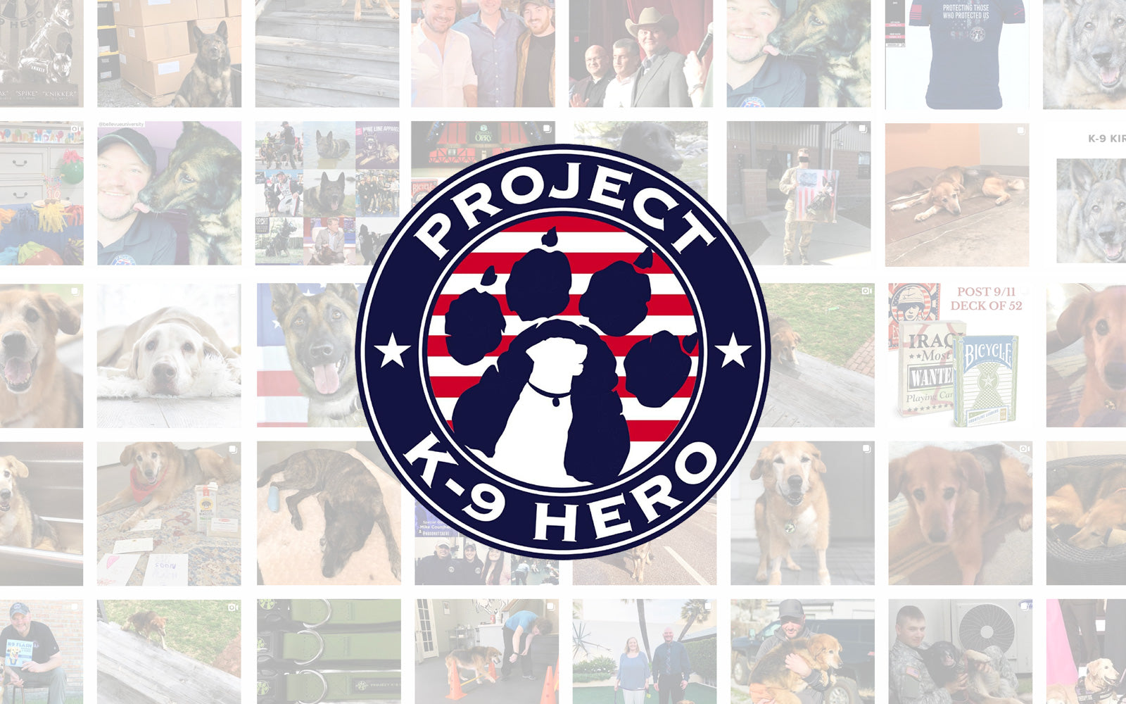 Project K-9 Hero Partners with Brutus Broth