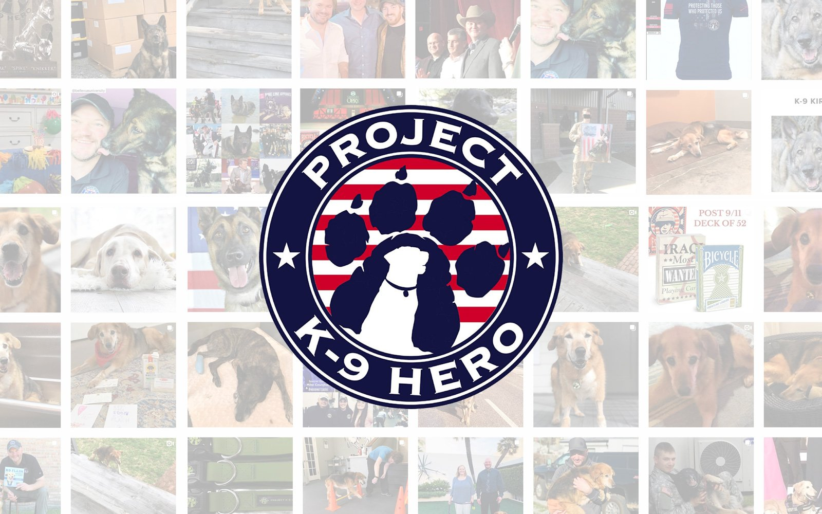Project K9 Hero partners with Brutus Broth