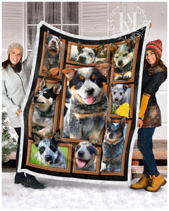 Hayooo Blanket Dog Cute Blue Heelers