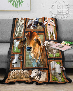 Hayooo Cow Blanket Cute Brahman Cattles