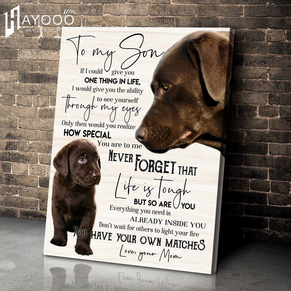 Chocolate Labs - Canvas - To My Son (Mom) - You Have Your Own Matches