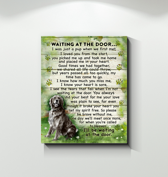 CANVAS - Golden Retriever - Waiting at the door (Black)