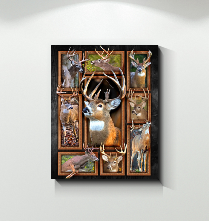 Deer Canvas Whitetail Deers