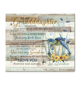 Turtle - Canvas - To my granddaughter - I love you forever and always