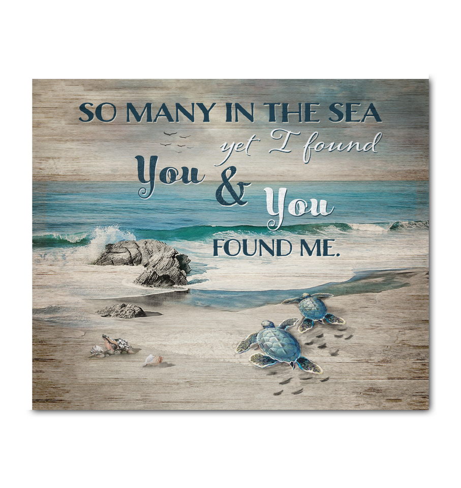 CANVAS - Turtle  - I Found You & You Found Me - yenyenstore