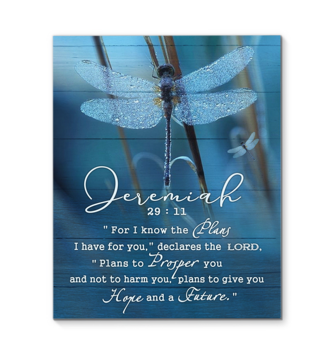 Canvas - Dragonfly - Jeremiah 29:11
