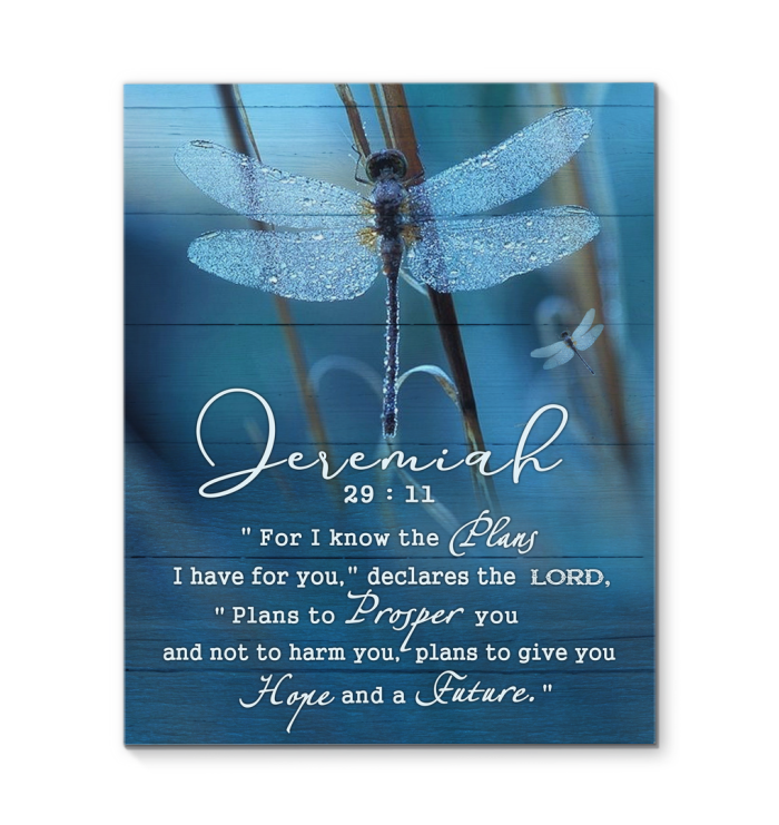 Canvas Dragonfly Jeremiah 29:11
