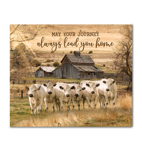 Canvas - British White Cows - May Your Journey