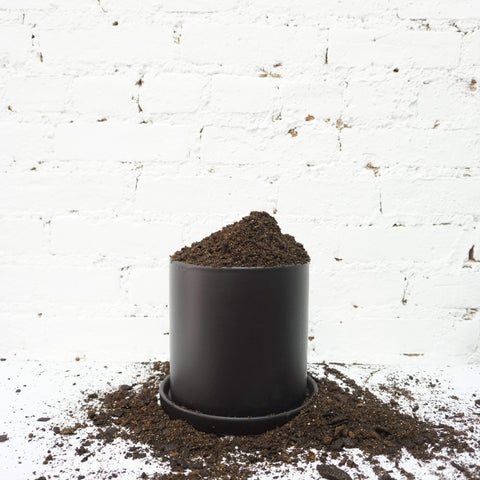 093-Cylinder Ceramic Planter - Dahing Plants