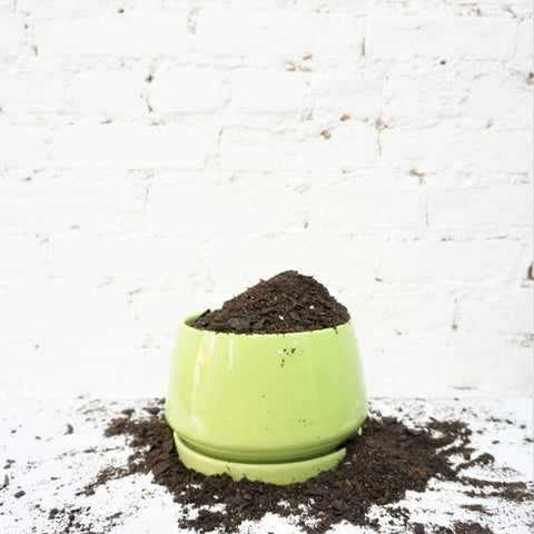 035-Cone Ceramic Planter - Dahing Plants