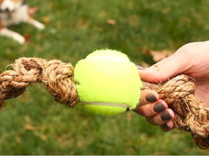 DIY Tennis Ball Rope Toy