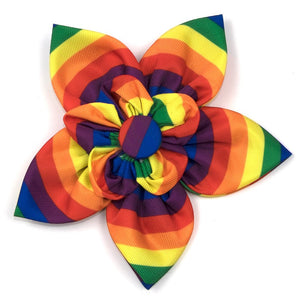 The Worthy Dog Rainbow Flower