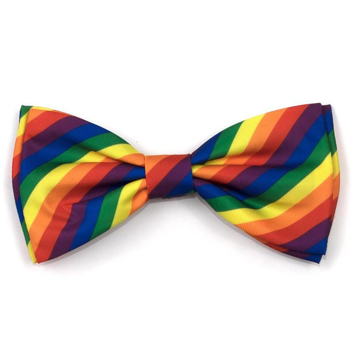 The Worthy Dog Rainbow Bow Tie