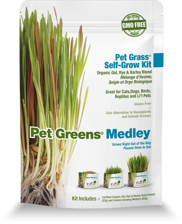 Pet Greens - Pet Grass Self-Grow Kit
