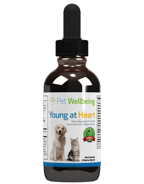 Pet Wellbeing - Young at Heart for Dogs and Cats