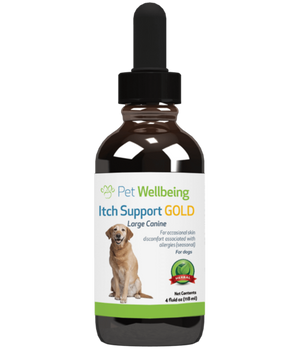 Pet Wellbeing - Itch Support GOLD for Dogs and Cats