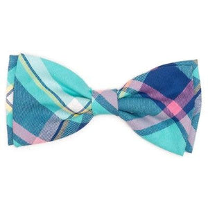 NEW! The Worthy Dog Aqua Navy Plaid Bow Tie for Dogs & Cats