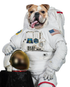 'Astronaut' 3D Pillow Design Upgrade