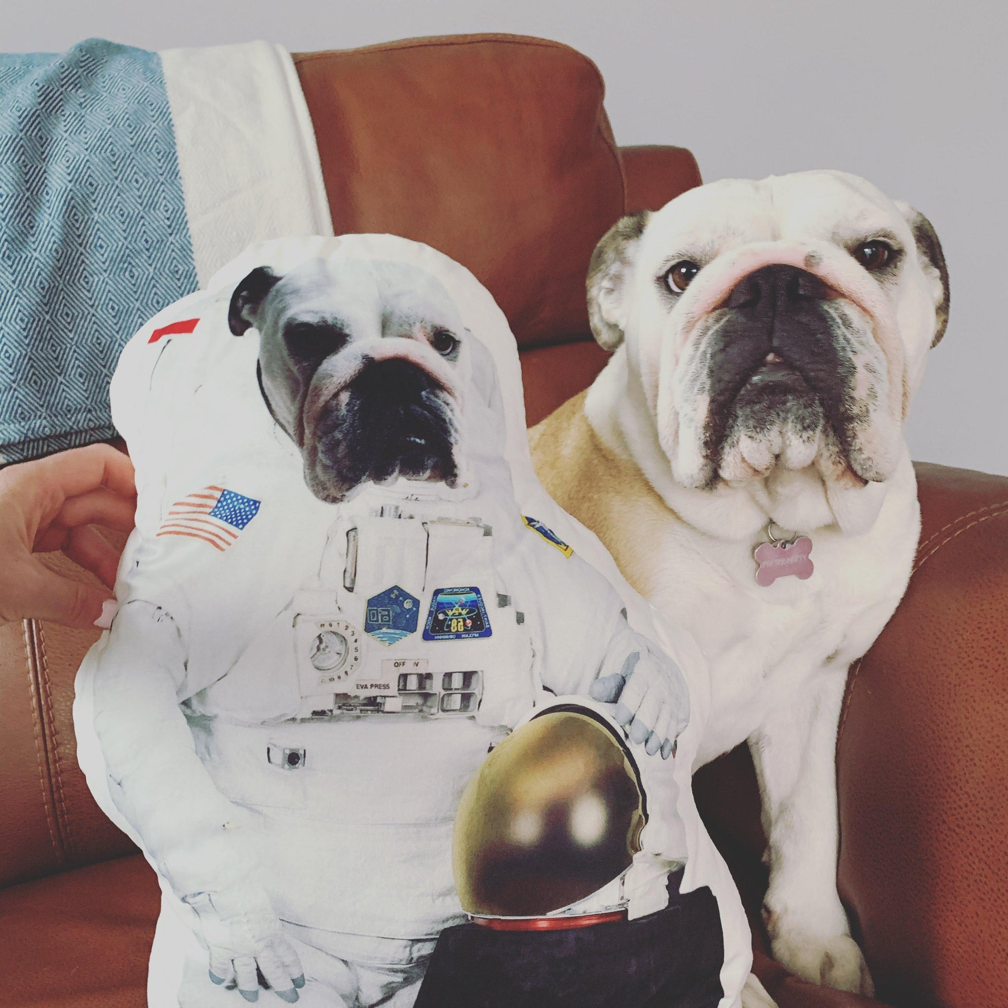 SquishyFacedCrew™ Astronaut Custom Shape Cushion