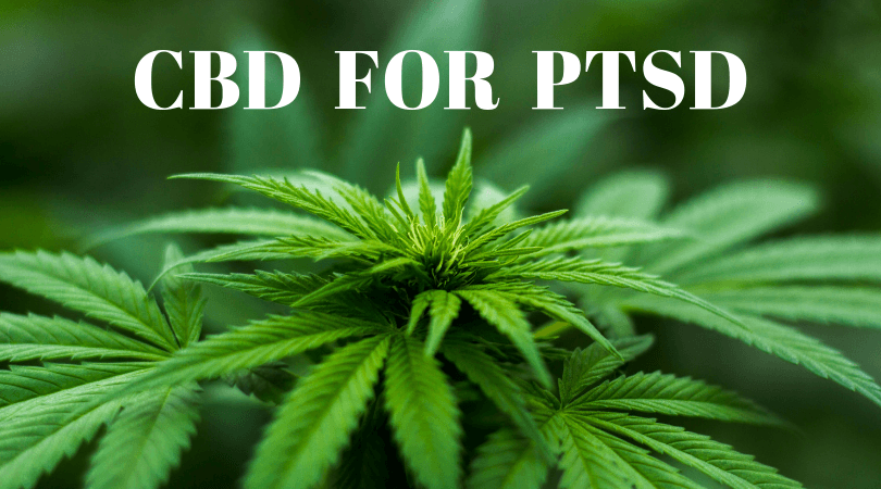 CBD for PTSD
