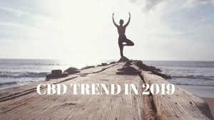 CBD IN 2019  - TREND OR LONG LASTING WELLNESS SOLUTION?