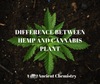 Difference between hemp and cannabis plant