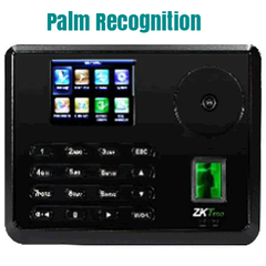 Palm recognition