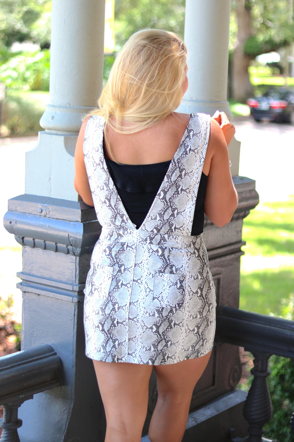 Plunge Neck Snakeskin Dress