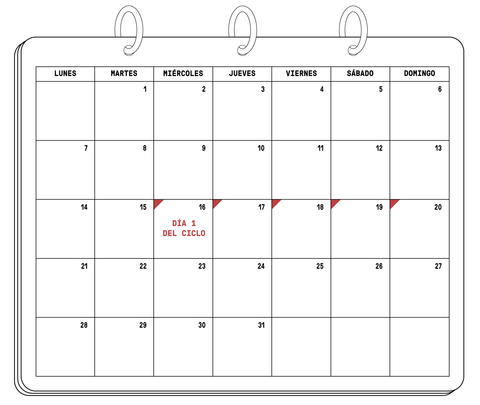 Calendario menstrual - The Chemist Look