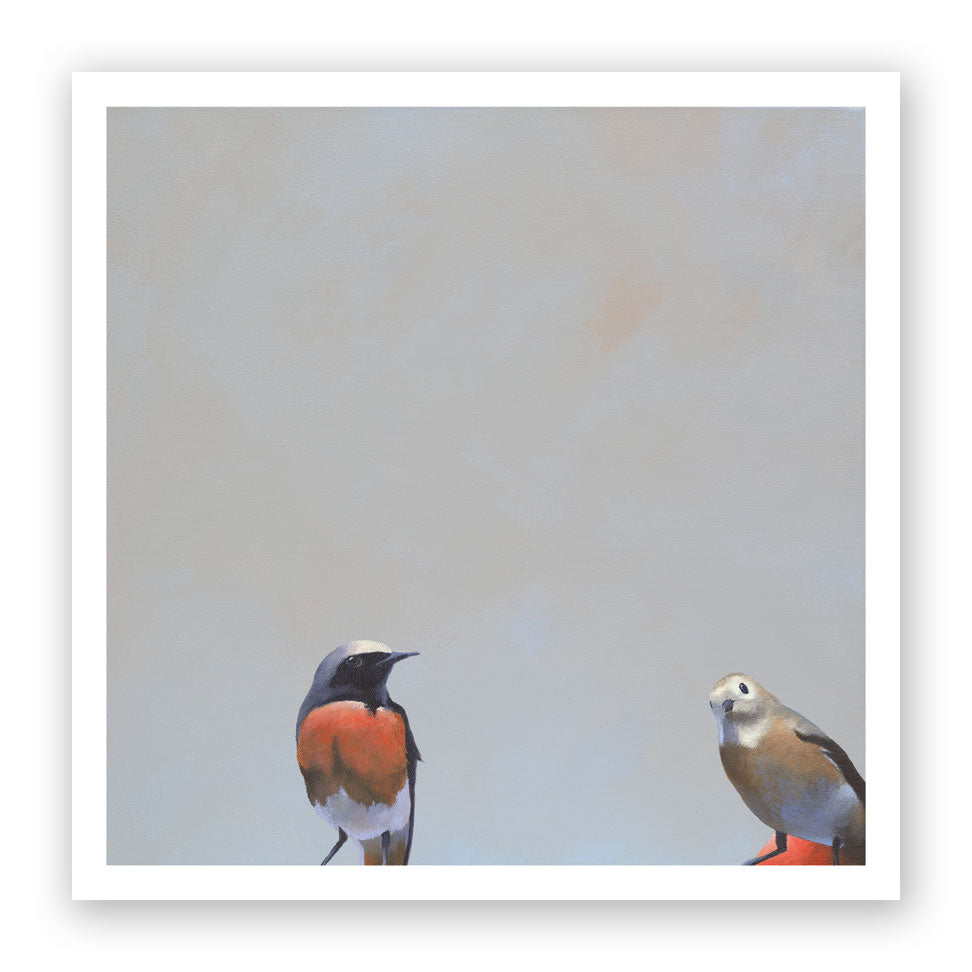 12 x 12 Two Birds Art Print